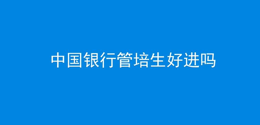 中国银行管培生好进吗